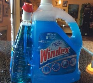 Windex—1 gallon